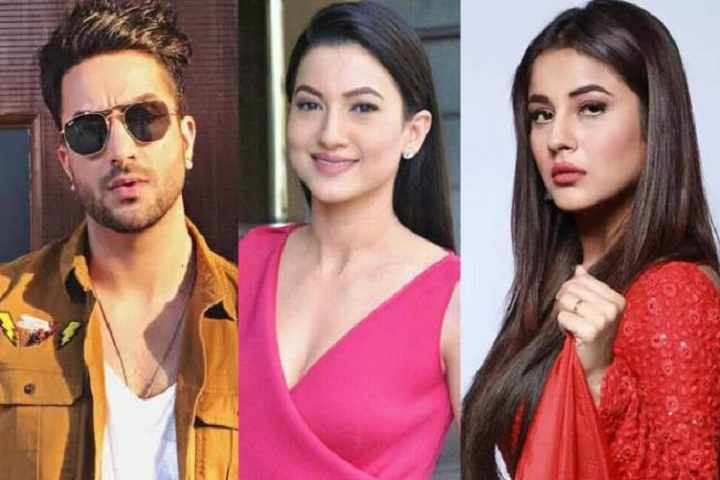Khatron Ke Khiladi 9 Contestant Aly Goni Feels Shehnaaz Gill Should Have Been Sent To Bigg Boss 14 Instead Of Gauahar Khan