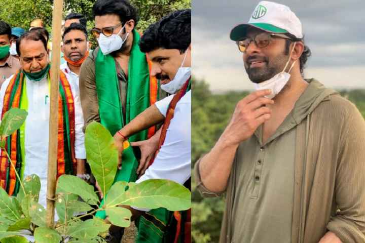 Superstar Prabhas Adopts 1650 Acres Of Forest Land As Part Of Green India Challe...