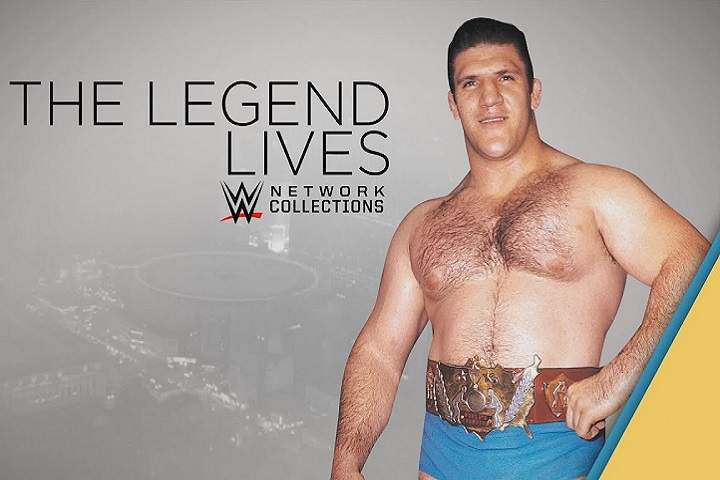 Top 10 Longest Combined Reigning WWE Champions