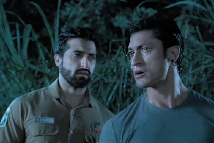 Junglee Day 6 Box Office Collection And Occupancy Report