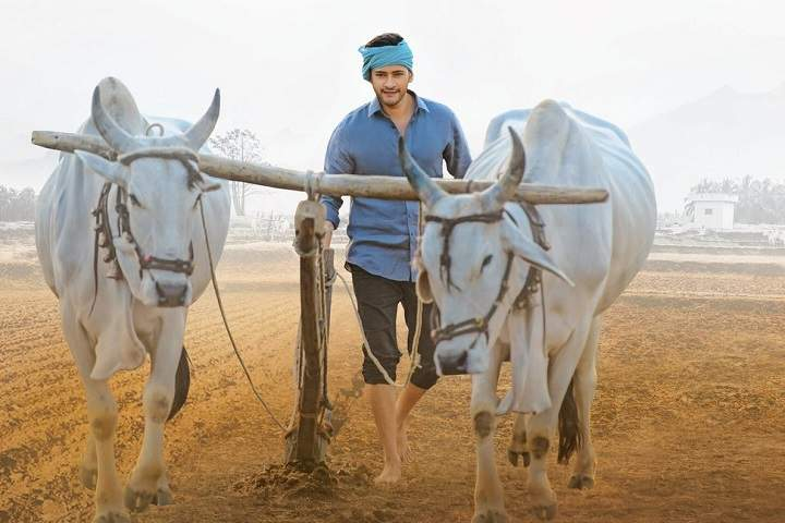 Maharshi Day 5 Box Office Collection and Occupancy Report