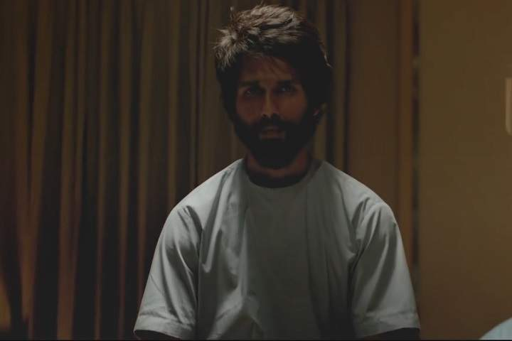 Kabir Singh Day 14 Box Office Collection