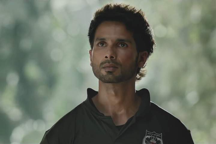 Kabir Singh Day 17 Box Office Collection