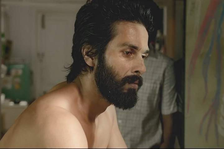 Kabir Singh Day 20 Box Office Collection